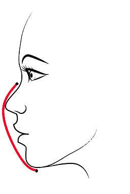 profilo.jpg