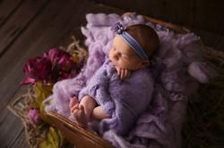 20181107 - Roslyn Warren - Lily_Newborn2