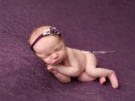 Willow - Newborn Session