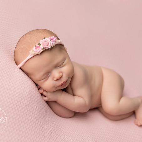 Dixie - Newborn