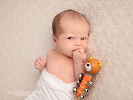 Mason - Newborn