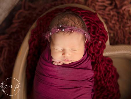 Harper - Newborn