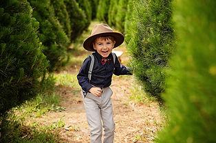 E20201122 - Laura Savage - Xmas Tree Farm13 copy.jpg