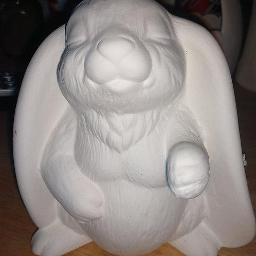 Flop eared 🐰 bunny
