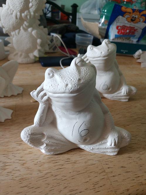 Posing frog 🐸