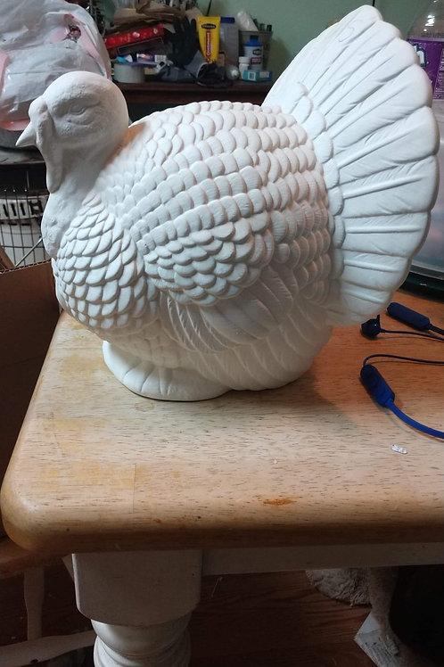 Large Turkey