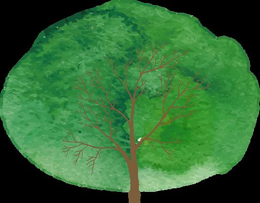 スライド挿入用木.png