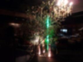 光と花.jpg