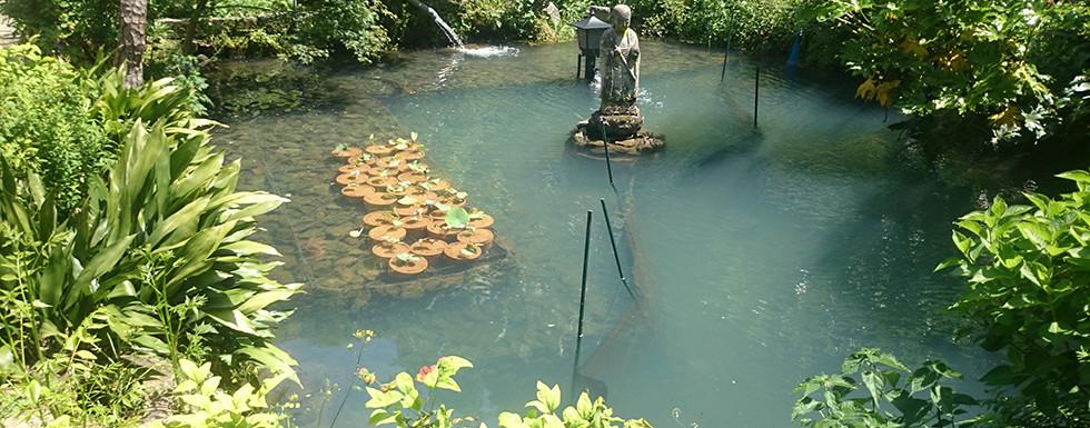 水の流れる庭 池・壁泉3.jpg