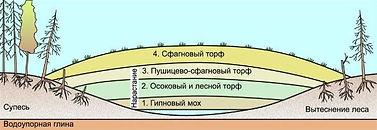 Рисунок8.jpg