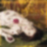 Invictus pochette.jpg