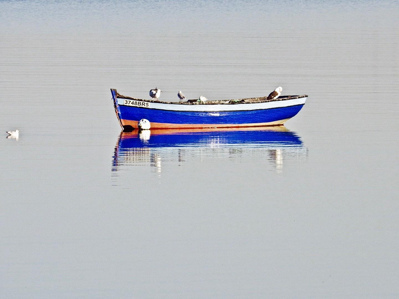 053_Cécile-Louvel_Baie de Lisboa