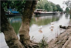 074_Françoise-Geier_Bord de Seine près d