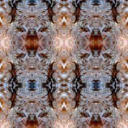 069_ODE_Artiste-du-Vivant_Khepri