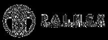 palmex-logo.png