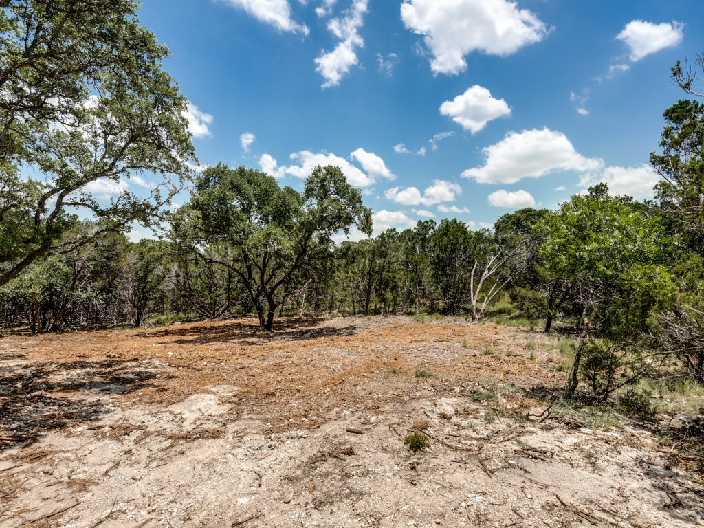 2908-puter-creek-rd-spring-branch-tx-MLS