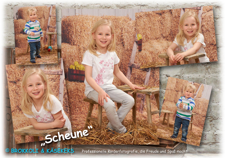 B+K_Einleger_2019_Scheune