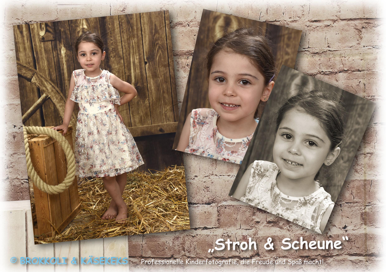 B+K_Einleger_18_Stroh Scheune