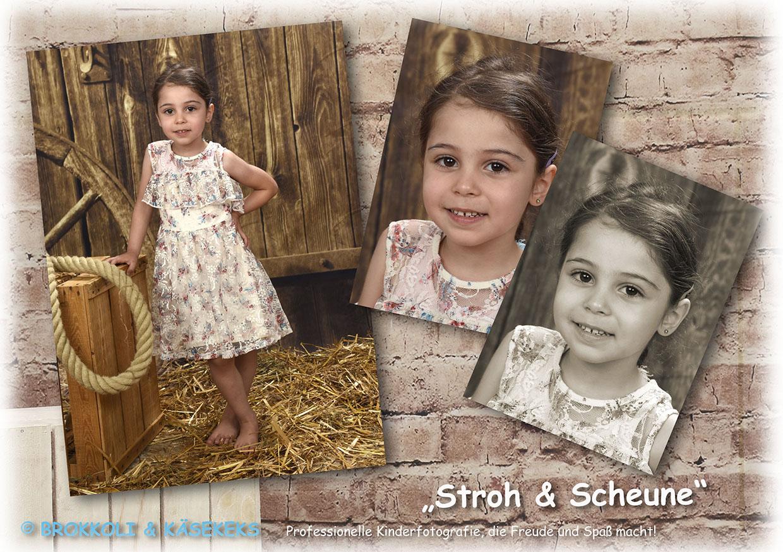 B+K_Einleger_18_Stroh Scheune(1)