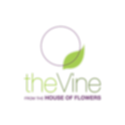 The Vine Logo Design, logo for a newsletter