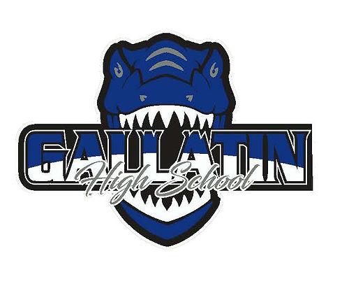 Raptor Logo - White.jpg