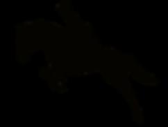 Black Horse Rider Transparant L.png