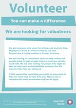 Volunteer poster copy.jpg