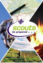 Scout logo for sav copy.JPG