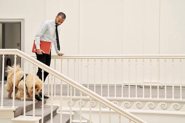 Sammy Mahdi en hond Pamuk gaan van de trap.jpg
