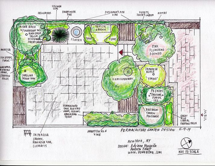 Andrew Faust - Manhattan Backyard
