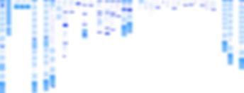 mobile-prototype-ux-cro@2x.jpg
