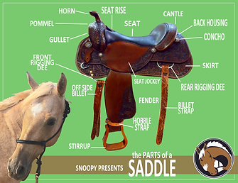 Parts of the Saddle.png