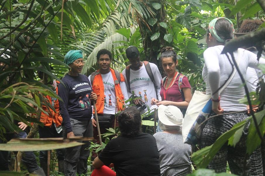 Taller periodistas ONU-REDD julio 20