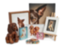 Pet photography artwor and products