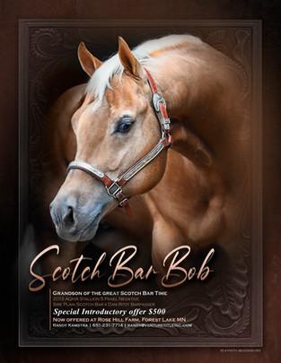 Scotch Bar Bob Final.jpg