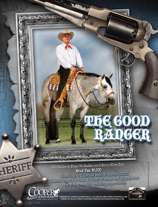 The Good Ranger.jpg