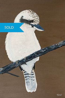 SOLD - Kookaburra- Original Arylic Painting