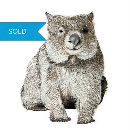 SOLD - Wally