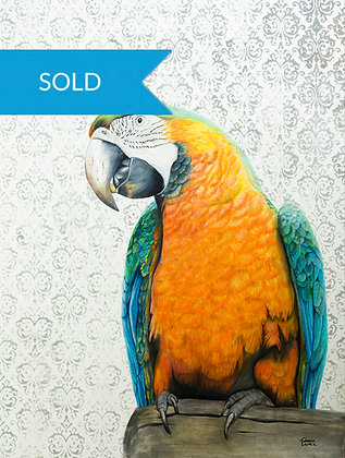 SOLD - Pretty Polly