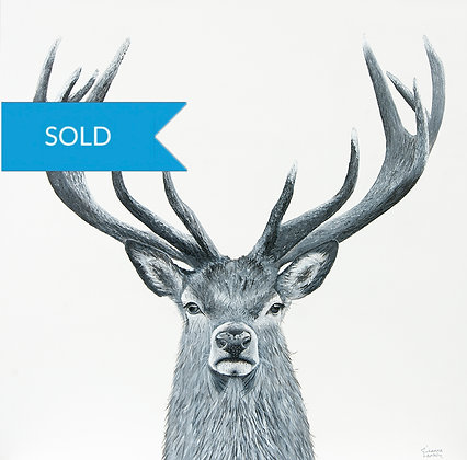 SOLD -Deer- Archival Canvas Print