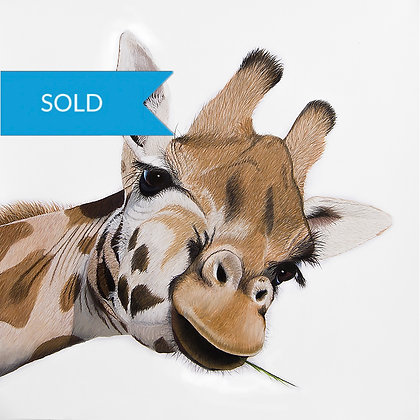 SOLD - Giraffe Original Pastel Drawing