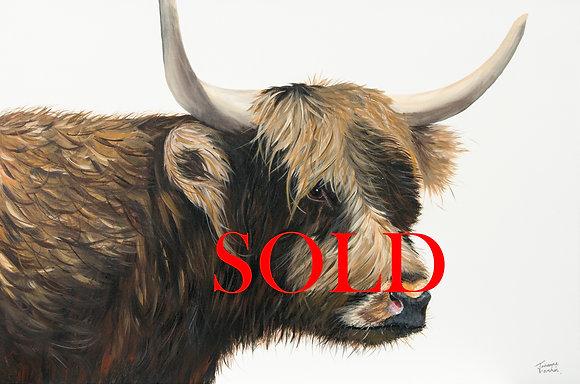 Highland Cow- (91.4 x 60.9cm) Original Arylic Painting
