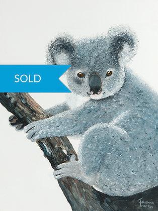 SOLD - Koala- Original Arylic Painting