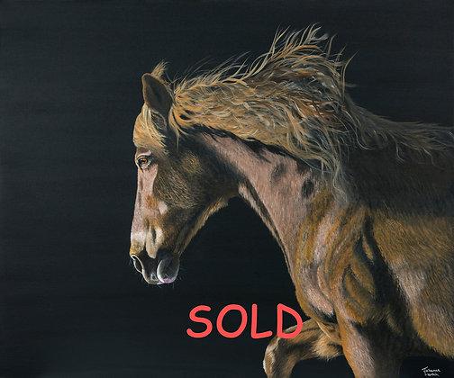 Stallion- (91.4 x 76.2cm) Original Arylic Painting