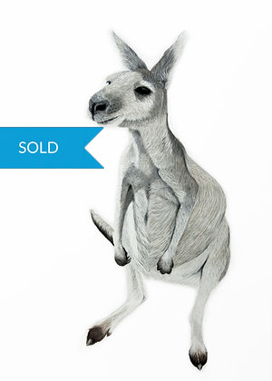 SOLD - Boo The Roo