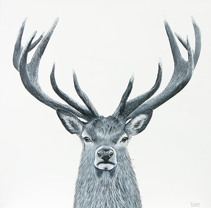 Deer- (76.2 x 76.2cm) Original Arylic Painting on Canvas (Large)