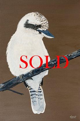 Kookaburra- (76.2 x 50.8cm) Original Arylic Painting