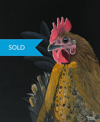 SOLD - Hen in Morning Light-Original Arylic Painting
