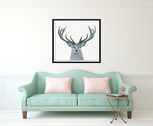 Deer- Archival Canvas Print