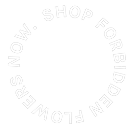 ShopNow-18_edited.png
